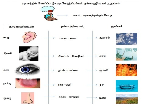 senses-elements - tamil