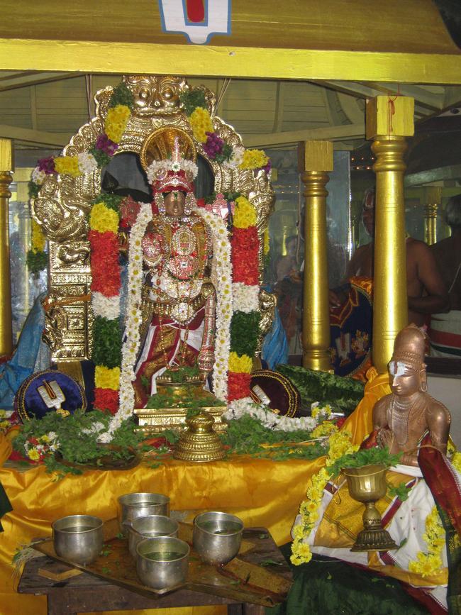 thirucherai-nammazhwar-thiruvadi-thozhal-2013-27