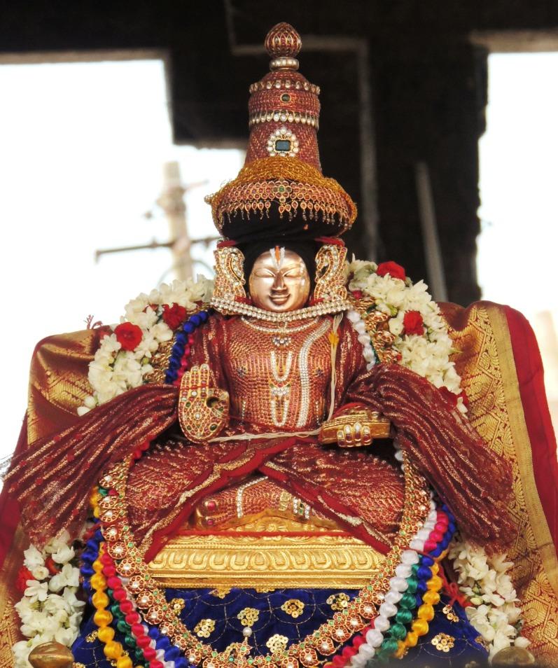 thiruvahindrapuram-swami-desikan-thirunakshatram1